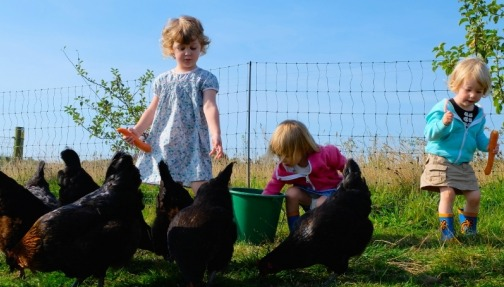 children collect eggs on farm holiday