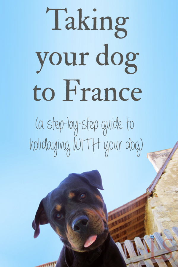 "I've had a steady stream of ""oh, you took the dog with you! How easy is it to take your dog to France? Was it complicated? What did you need to do? How much was the dog passport?"" type questions. I thought the easiest thing was to put all the answers in one place."