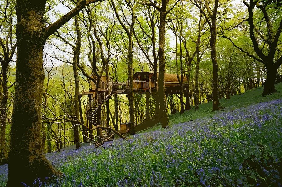 luxury treehouse wales