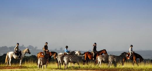 swaziland-horseback-safari