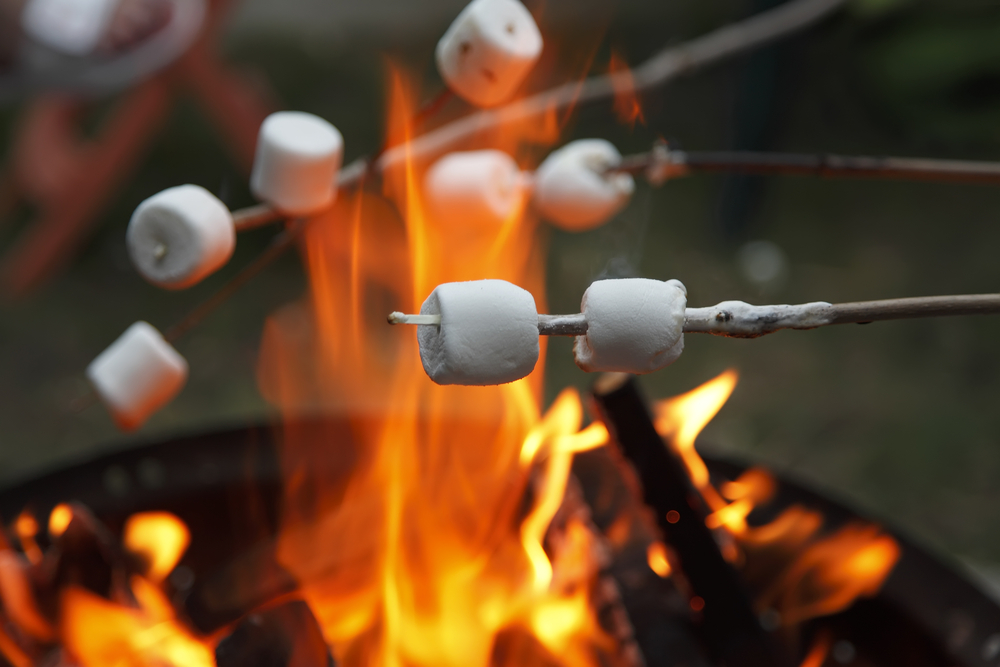 Toasting Marshmallows image courtesy of Shutterstock